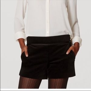 LOFT Black Velvet Tuxedo Shorts